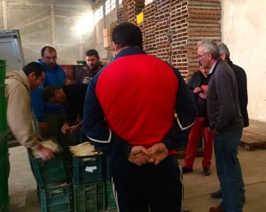 Delegacion del SAT (Cañamero, A.Bodalo...) con los Temporeros andaluces en la recoleccion del esparrago en Navarra. jpg - 05
